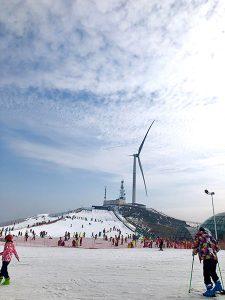 百里荒滑雪
